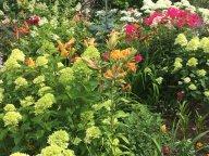 Сад в июле роскошен