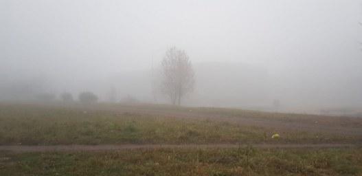 У нас туман