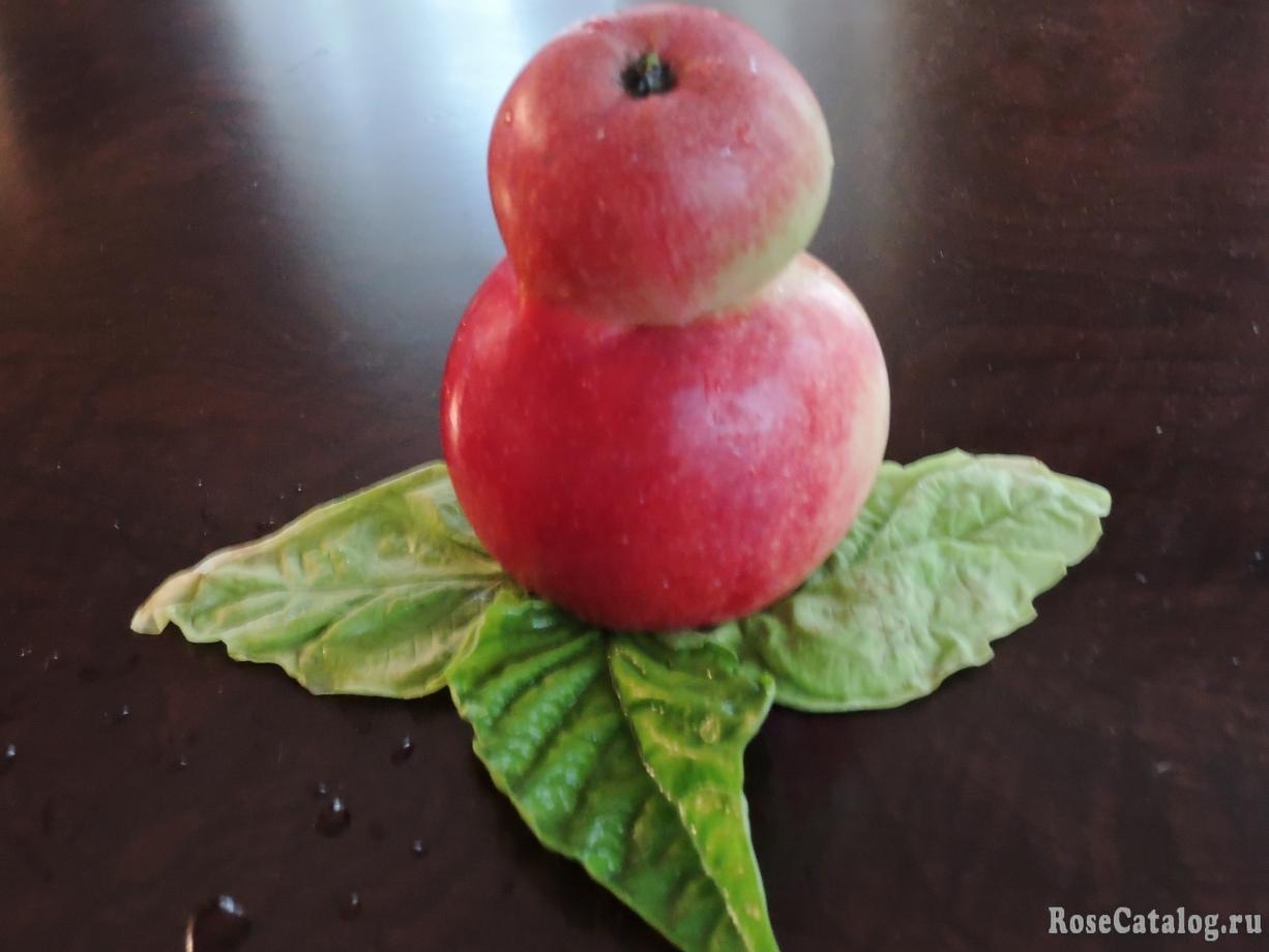 яблочная матрешка