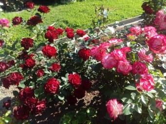 Hommage a Barbara , Jubile  du Prince De Monaco